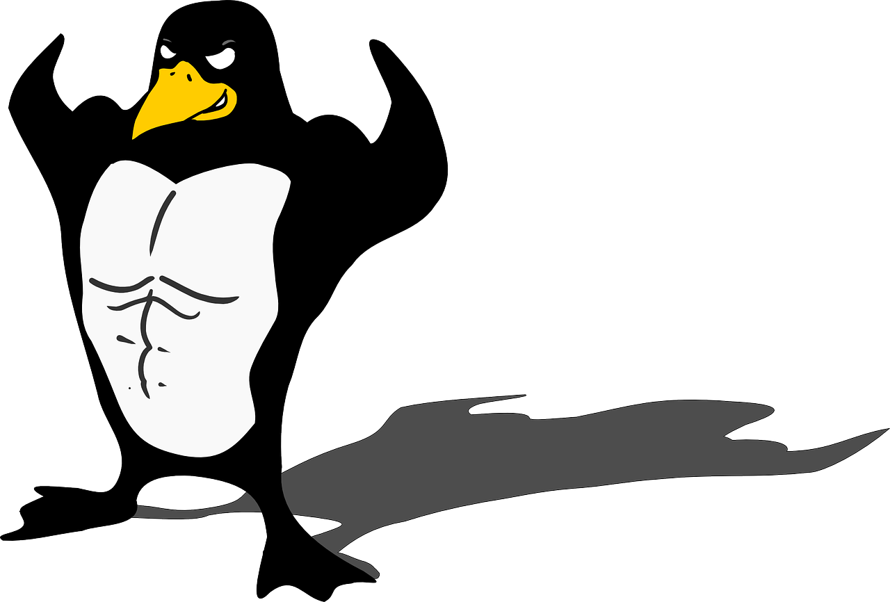 Linux command line – things a programmer can learn in a day